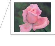 85046_Pink_Rose_AS_sm.jpg